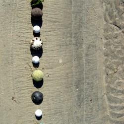 Beach Balls Vertical
