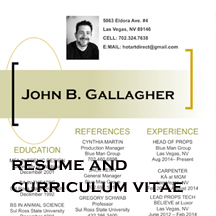 Resume and CV Button